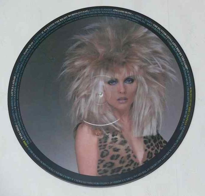 Picture This Disc